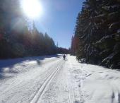 Šumavský Ski maraton